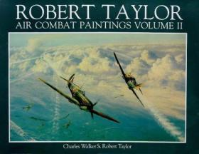Robert Taylor - Air Combat Paintings