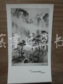黑白照片一张:山水画(1982年上海画院迎春画展)胡伯翔 绘画