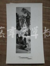 黑白照片一张:山水画(1982年上海画院迎春画展)张成 绘画