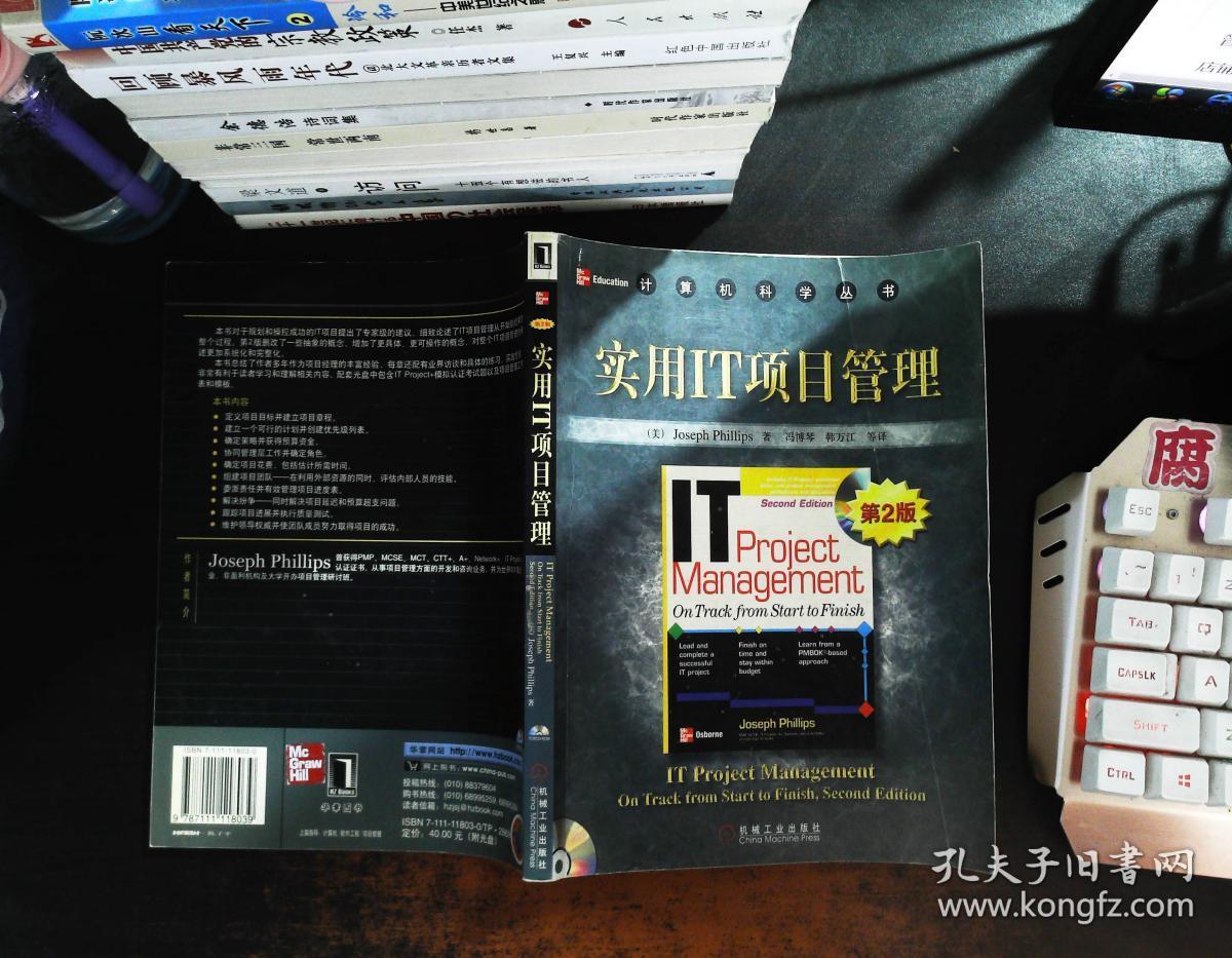 实用IT项目管理 第二版【附光盘】