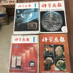 科学画报,1981、1982、1983、1984、四年每年1一12期,共48本。