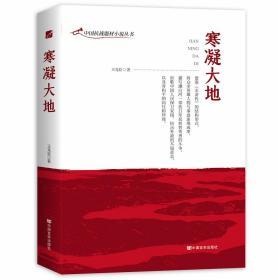 中国抗战题材小说丛书:寒凝大地(长篇小说)
