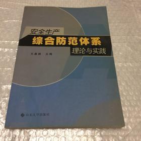安全生产综合防范体系理论与实践