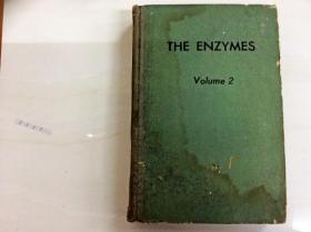 L003563 THE ENZYMES Volume 2 (书壳破损,脱胶,书本自然成旧,首页有读者签名)
