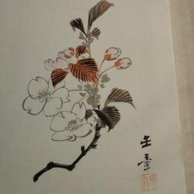 日本画大师川端玉章套色木版画《樱花》