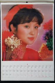 上世纪挂历画1990年美女明星全13张