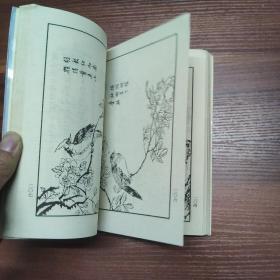 新版·芥子园画谱-(花卉翎毛)