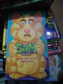 Sam the cat a use your words feeling book洞洞全英文童书