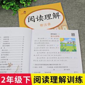 全新正版 阅读理解二年级下册部编人教版小学生2年级语文阅解理解专项训练书同步练习册一课一练课外阅读书籍每日一练带拼音彩绘版天天练