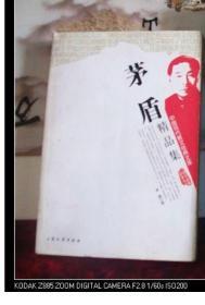 茅盾精品集  中国现代散文经典文库