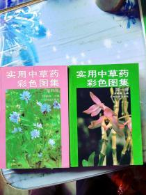 实用中草药彩色图集1-4册