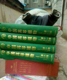 中国高等植物(第4卷)