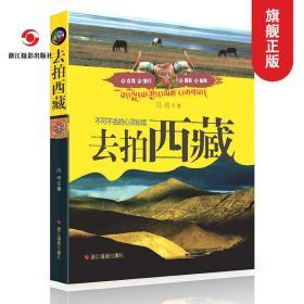 去拍西藏(不可不去的心灵秘境) 国内旅游指南/西藏自助旅游攻略书影集 关于西藏旅游的书 正版畅销书籍