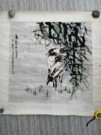 画家陈志宏花鸟画