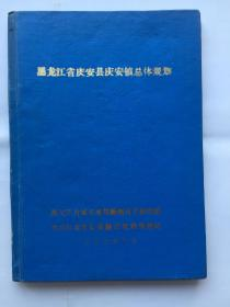 黑龙江省庆安县庆安镇总体规划