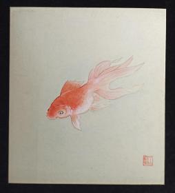 【日本回流】原装精美卡纸 佚名 国画作品《金鱼》一幅(纸本镜心,尺寸:27*24cm,钤印:水山泰里)HXTX214059
