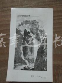 黑白照片一张:山水画(国画——花鸟)胡振郎 绘画