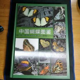 中国蝴蝶图鉴
