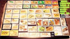 精选特惠:【两栖爬行动物】专题邮票一组50枚精挑细选!部分成套!票面精美、无重复。 请注意图片及说明