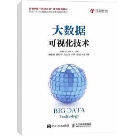 正版 大数据可视化技术 姜枫 许桂秋 人民邮电出版社 9787115