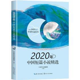 2020年中国短篇小说精选(2020中国年选系列)