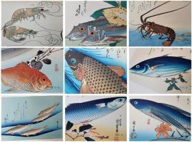 歌川广重《鱼尽狂歌集》 全20张原大复刻 日本浮世绘花鸟画杰作 西方博物画精确写生 与东方韵致之结合