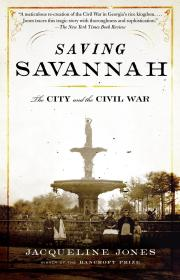 Saving Savannah: The City and the Civil War拯救萨凡纳:城市与美国内战,班克罗夫特奖得主、杰奎琳·琼斯作品,英文原版