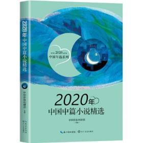 2020年中国中篇小说精选(2020中国年选系列)