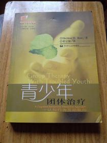 青少年团体治疗——认知行为互动取向  (社会工作名著译丛)