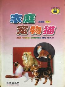 家庭宠物猫