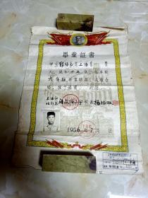 1956年上海市北郊区闸殷路小学毕业证