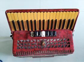 老鹦鹉手风琴