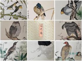 喜多川歌麿《绘本百千鸟》全15枚木版水印 安达院原大复刻 日本浮世绘花鸟 江户狂歌诗会与发达出版业珠联璧合之杰作