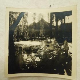 老照片-济南趵突泉