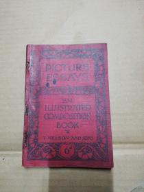 PICTURE ESSAYS (软精装  1905出版)