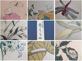 喜多川歌麿《画本虫撰》全15枚木版水印 悠悠洞原大复刻 日本浮世绘花鸟画杰作 东方古典博物图