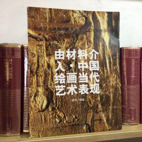 由材料介入·中国绘画当代艺术表现
