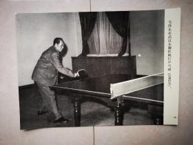 老照片:1962年,毛泽东在武汉东湖住地打乒乓球
