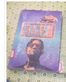 骗枭(下卷)94年1版1印