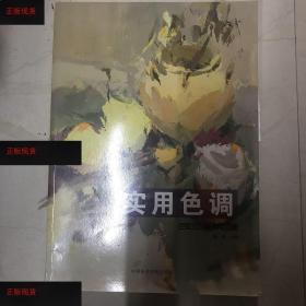 【欢迎下单!】实用色调 : 色彩色调经典范画中国美术学院出版社9