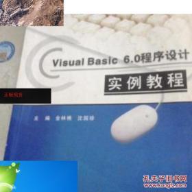 纸质现货!【现货】【欢迎下单!】正版~Visual Basic 6.0程序设