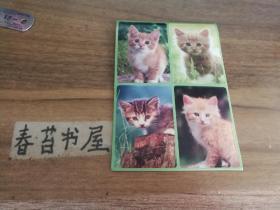 贴纸[9cmX13cm]---猫【1 张】
