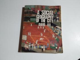 A SOCIAL GEOGRAPHY OF THE CITY DAVID LEY(16开 书名见图 品相见图)