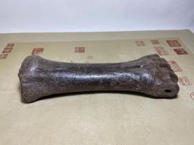 """骨化石,冰河时期骨化石,包浆醇厚,沁色自然,紫色骨化石,顶级极品骨化石""""xiniu骨化石"""",""""罕见xiniu骨化石"""",小腿骨化石,极为稀有罕见,可遇不可求,百年难得一件,极为罕见十分难得,收藏佳品"""