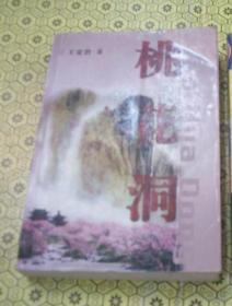 桃花洞 王安治 中国文联出版社(这是一部反应当代农村生活的小说)