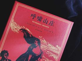 呼啸山庄 杨苡百岁诞辰,莱顿插图版 经典再现  译林出版社