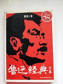 HA1015034 鲁迅经典文集