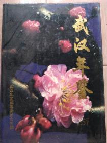 武汉年鉴1997