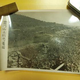 老照片-云门山上的葡萄园