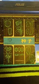 种子-中学生物学教学参考丛书